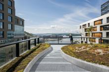 Trenger du et grønt tak? Pilotprosjekter etterlyses!