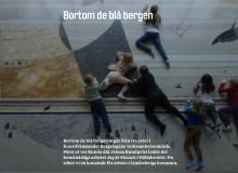 Konstnär sökes för deltagarbaserat konstnärligt arbete i Lindesbergs kommun