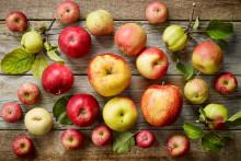 Få koll på äpplen