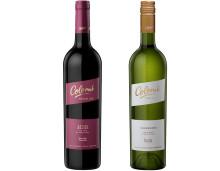 Nyheter från världens högst belägna vingårdar!
