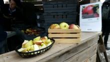 Svenska Retursystem rapporterar från årets Äppelmarknad i Kivik