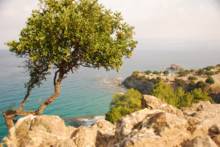 Ny aktiv ferie: Vandretur på Kypros