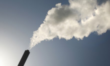 Bæredygtig biomasse er værn mod kul i Danmark