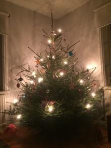 Julgransplundring och årsmöte Avdelning Skåne