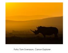 Canon ger 5+1 fototips för bättre bilder och filmer från dina resor