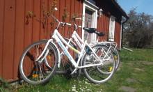 Ny entreprenör i Höga Kusten ska utveckla Härnösands gästhamnar
