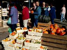 Bauern- und Regionalmarkt in der Kieler Innenstadt