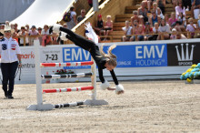 ​Showigt under Falsterbo Horse Show!