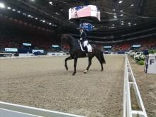 Fredagen startade med lovande unga hästar som fick visa upp sin potential i ett dressyrprogram.