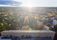 Långsiktighet är nyckeln – Einar Mattssons hållbarhetsrapport 2017