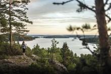 Sverige har det bedste omdømme i verden