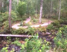 Pressinbjudan: Engelska parken i Kloster återuppstår med hjälp av medel från Länsstyrelsen
