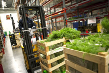 Effektivare hållbarhetsinformation om leverantörer hos Martin & Servera
