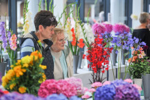 Annual Flower Show gets ready to bloom