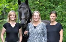 Almi Invest investerar i horsetech-appen Ztable