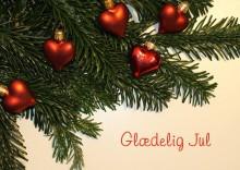 EWII ønsker god jul til alle