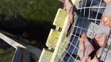 Lossiemouth East Beach footbridge update