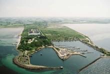 Vi firar Malmös nya naturreservat Klagshamnsudden