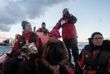 Läkare Utan Gränser och Greenpeace startar räddningsinsats på Egeiska havet