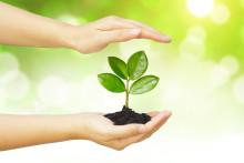AkzoNobel toppar hållbarhetsindexet DJSI för fjärde året i rad