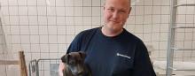 Hundehvalp tager kampen op mod rotterne i Nordjylland