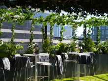Clarion Hotel Sign lanserar Stockholms grönaste takhäng - Rooftop Garden Bar