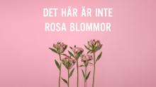 Det här är inte rosa blommor!