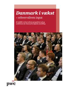 Danmark i vækst - erhvervslivets input