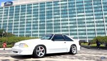 Mustangen der vendte hjem igen