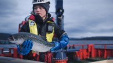 Cermaq introduces fish welfare policy