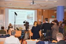 Vattenfall och Norrtälje kommun höll presskonferens om arbetet efter stormen Alfrida