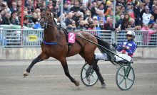 Royal Fighter och Jennifer Tillman till Åby Stora Pris