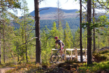 De svenske skibakker forvandles til udfordrende mountainbike-ruter