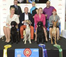 Rekordmånga besökare och hundar på årets MyDOG