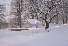 Vansta Trädgård  bjuder på vinterbilder och lite mer