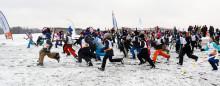 2200 fjärdeklassare åker skidor på Gärdet och i Hammarbybacken