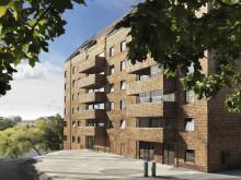 Träbyggandet är byggsektorns snabbspår i klimatfrågan