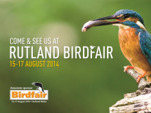 Rutland Birdfair Welcomes Panasonic  and its range of Lumix Cameras Perfect for Birding