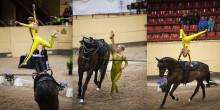 Dans och gymnastik till häst - voltige!