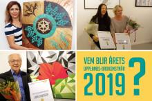 Vårsalongen 2019 Konst & Hantverk invigs den 9 mars