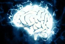 Wellnet och Missing Link inleder samarbete för hållbara medarbetare genom hjärnkoll