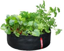 Vad blir nästa års trädgårdsprodukt?