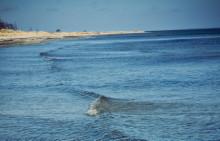 38 miljoner euro till att rädda Östersjön
