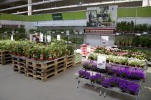 Blomsterlandet öppnar ny butik i Strängnäs
