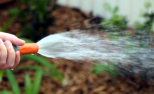 Spara vatten eller inte?