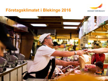 Företagsklimatet i Blekinge 2016