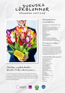 Svenska Lökblommor