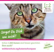 Freianzeige Katzenschutzpass