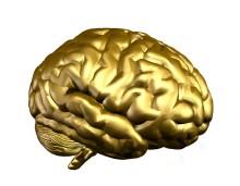 Coacha för hållbarhet med hjälp av neurovetenskap