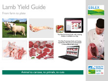 New guide to help processors and retailers gain maximum value from the lamb carcase